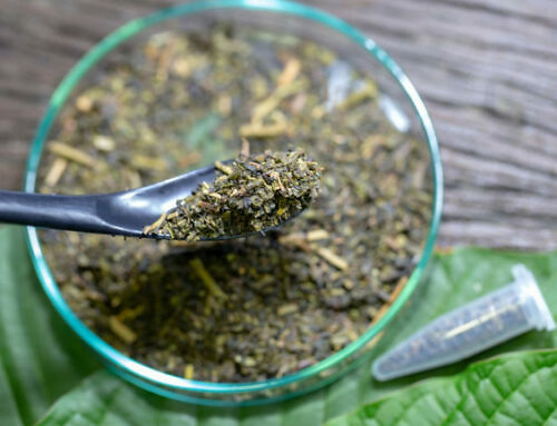 Kratom For Beginners: Easy To Follow Guide For Success