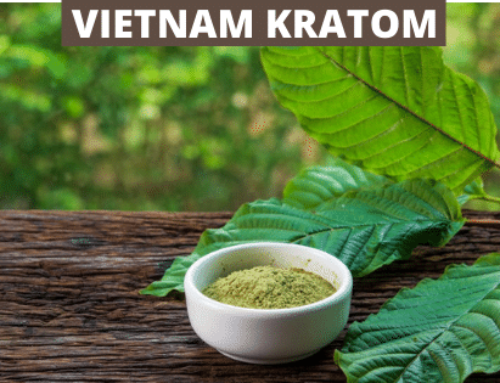 Kratom From Vietnam: History, The Farmers, Strains, and Dosage