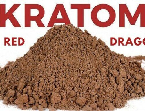 Red Dragon Kratom: Everything You Should Know